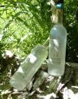 Mise en situation de bouteille de sève de bouleau